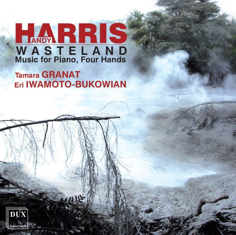 CD Wasteland